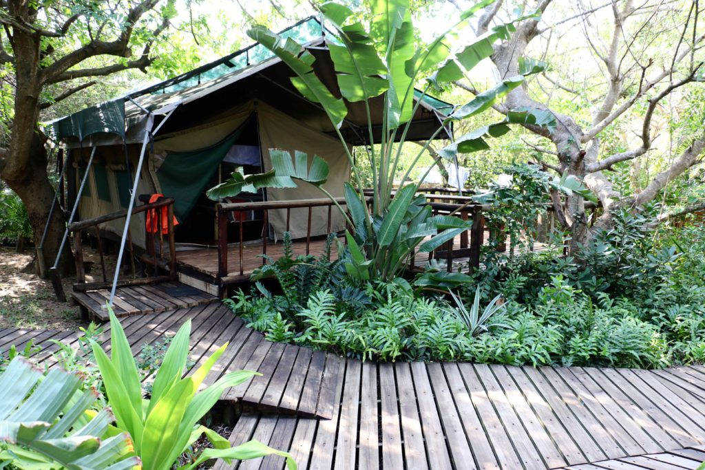 Safari tented camp